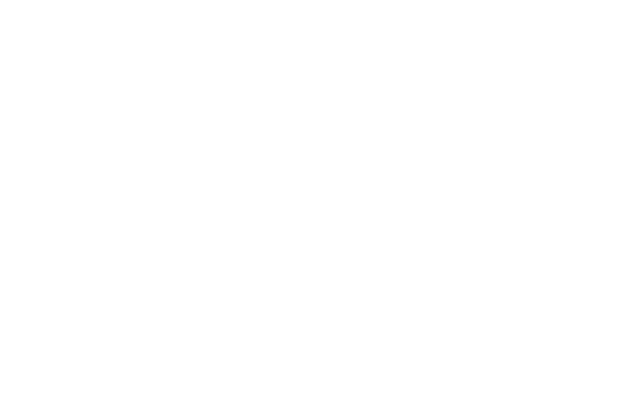 Hessen Haus German Style Bier Hall